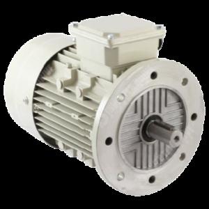 động cơ điện B5
